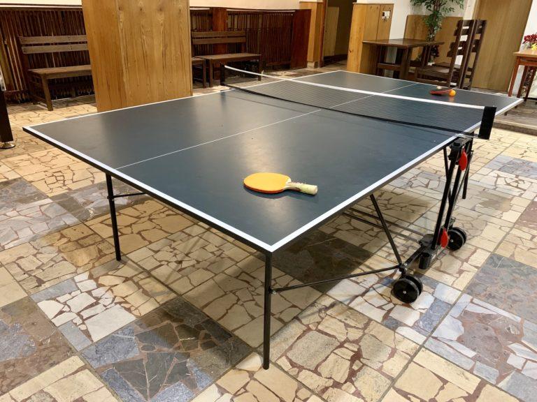Ping pong v herni